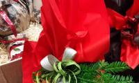 salumeria-filet-panettoni-artigianali-3.jpg